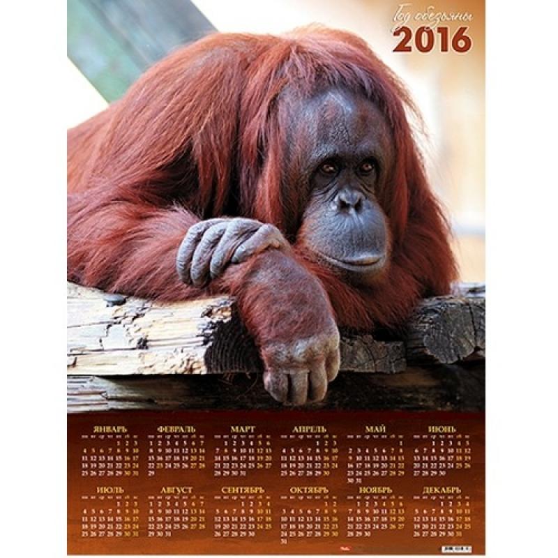 Обезьяна на календарь